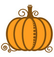 pumpkin orange image vegetable vector image vector image