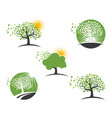 tree leaf logos nature element icon vector image vector image