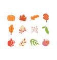 autumn bounty flat abstract elements set vector image
