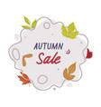 autumn sale sticker with bright foliage vector image