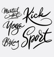 martial art and sport hand written typography vector image vector image