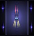 night car race vector image