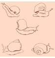 Snails Pencil sketch by hand Vintage colors vector image
