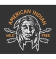 Native american indian head vector image