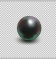 beautiful black shiny sea pearl vector image vector image