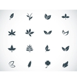 black leaf icons set vector image vector image