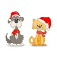 Cat and dog with christmas hats vector image