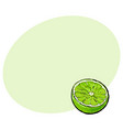 half of ripe green lime sketch vector image vector image