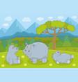 hippopotamus family vector image