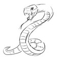 snake drawing on white background vector image vector image