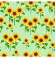 Summer flowers sunflowers seamless pattern vector image