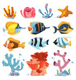 cartoon aquarium decor objects - underwater vector image vector image