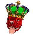 dog king in white background vector image vector image