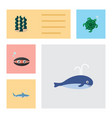 flat icon sea set of tortoise shark alga and vector image vector image