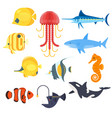 flat style set of exotic fish icon for web vector image vector image