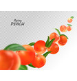 flying peach realistic 3d vector image vector image