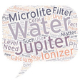 Jupiter Microlite the facts you need to know text vector image vector image