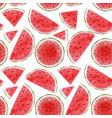 watercolor watermelon seamless pattern vector image vector image