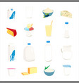 collection dairy products milk butter cheese vector image vector image