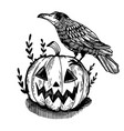 crow and pumpkin engraving vector image