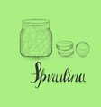 hand drawn green spirulina and lettering vector image