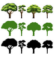 set of tree different design vector image vector image