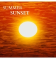 summer sunset background vector image vector image