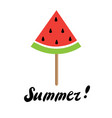 summer time watermelon vector image vector image