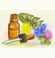 homeopathy vector image