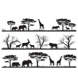 animals forest silhouette at savanah vector image