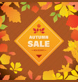autumn super sale banner with autumn leaves vector image