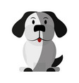 house pet icon image vector image vector image