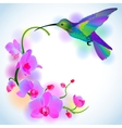 Rainbow humming-bird with violet orchids vector image