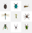 realistic bug dor arachnid and other vector image