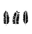 set of black tree leaf silhouettes vector image vector image