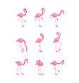 set pink flamingo in various poses flat cartoon vector image vector image