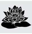 decorative lotus vector image