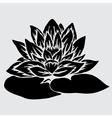 decorative lotus vector image vector image
