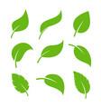 leaf icon logo vegan leaves green eco flat vector image
