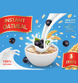 oatmeal ad with milk and black currant vector image vector image