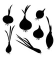 set silhouettes onions collection vector image