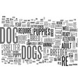 are you ready for a dog text word cloud concept vector image vector image