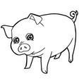 cartoon cute pig coloring page vector image vector image