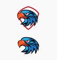 eagle head logo set vector image vector image