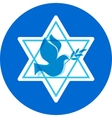 independence day israel david stars and peace vector image vector image