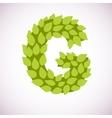 letter like a bush vector image vector image