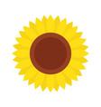 sunflower icon isolated on white background vector image
