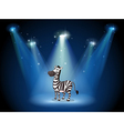 A zebra at the stage with spotlights vector image vector image