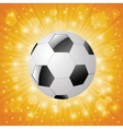 ball on a sun background vector image vector image