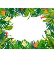 cartoon plant frame liana branches and tropical vector image